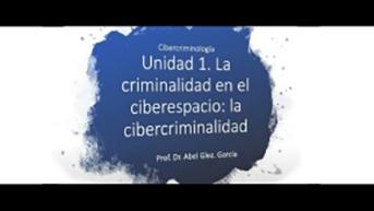 Unidad 1. La criminalidad en el ciberespacio: la cibercriminalidad
